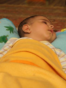 رایین در خواب؛ همراه با لالایی...